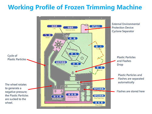 Working Profile of Frozen Trimming Machine