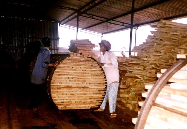 Rpm Rimpex Rubber Vietnam Natural Rubber Sawn Rubber Wood