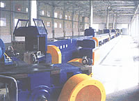 Triple Multiple Microwave Vulcanizing Flow Production Line
