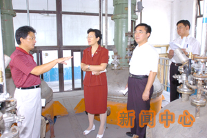Trans PolyIsoprene Plant, TPI Plant, Trans Isoprene Rubber Plant, Trans-l,4-PolyIsoprene Plant, 500MT/YEAR